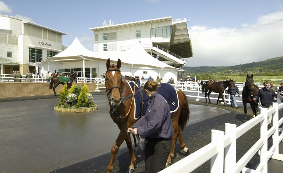 PVC polyester: Fabric structure at Cheltenham Racecourse