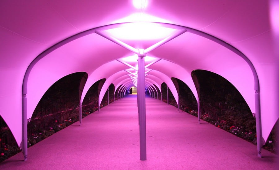 Colourful LED lights under a walkway fabric canopy