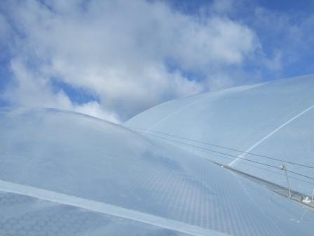ETFE cushions